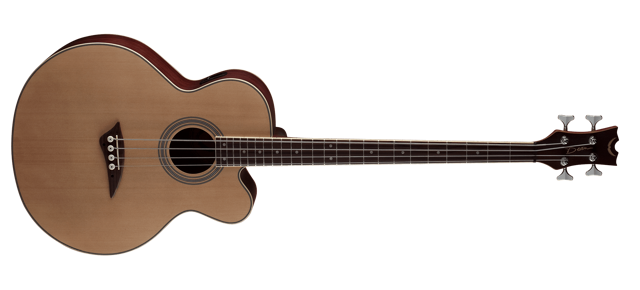 Acoustic/Electric Bass CAW - SN