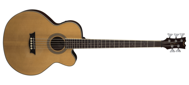Acoustic/Electric Bass CAW 5 String - SN