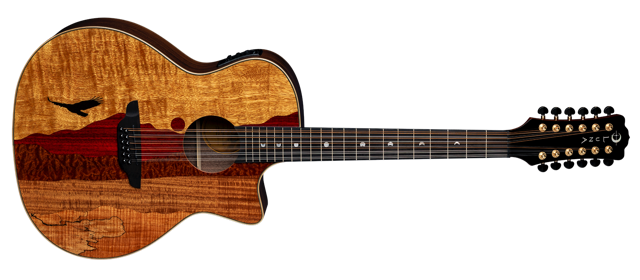Vista Eagle 12-String Cutaway A/E with Hardshell Case