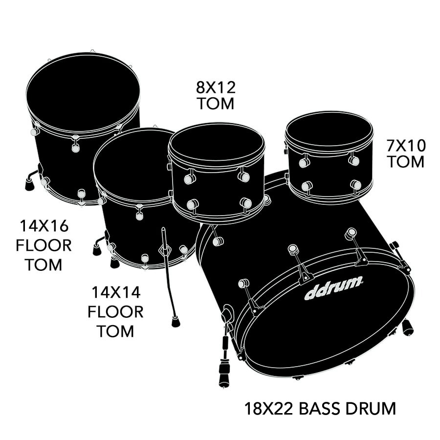 Dios 5pc exotic gloss nat. shell pack